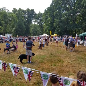 Chorleywood Village Day